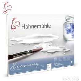hahnemuhle harmony 300g akvarell papir rough